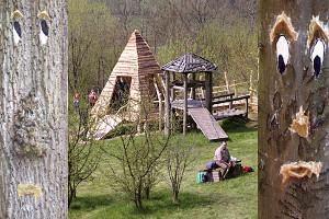 Blick auf den Erlebniswald Schönhagen in Uslar