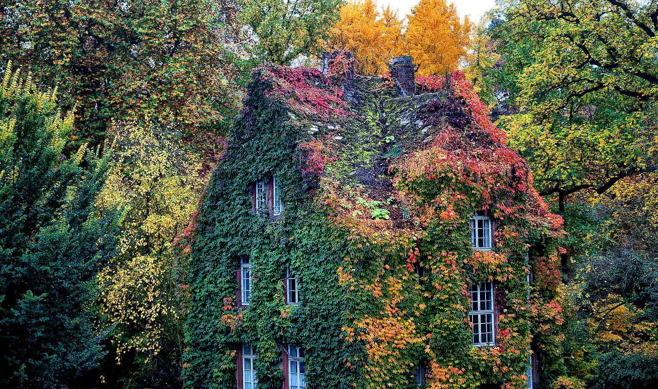Botanischer Garten Der Justus Liebig Universitat Giessen Mamilade Ausflugsziele