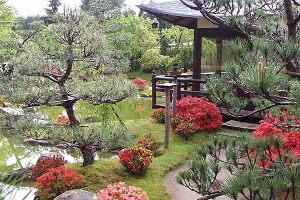 Japanischer Bonsaigarten in Ferch   Mamilade Ausflugsziele