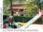 Baiersbronn Forsthaus Auerhahn
