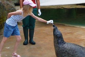 Kindergeburtstag im Zoo Saarbrücken