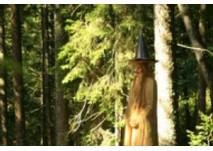Touristinformation Bernau: Zauberwald-Pfad