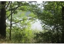 Die Froschkönig-Rallye rund um Biesenthal und den Wukensee