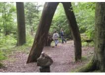 Walderlebnispfad Bischofsgrün (c) alex grom