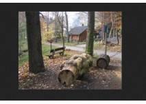 Arboretum Brunndöbra