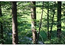 Deggenhausertal - Wander-Lehrpfad