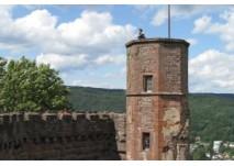 Burgruine Dilsberg (c) alex grom