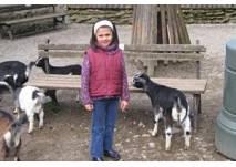 """Kinder- und Jugendfarm """"Dreieichhörnchen"""" in Dreieich"""