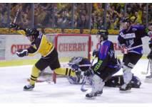 Eishockey Bayreuth Tigers