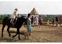 1. Erfurter Maislabyrinth