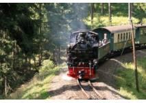 Fahrt mit der Fichtelbergbahn (c) SDG
