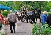 Gut Basthorst Frühjahrsmarkt
