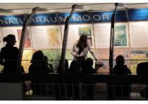 Familien bei der Führung im Landesmuseum Natur und Mensch Oldenburg