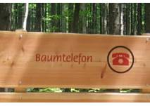 Walderlebnispfad im Rothschwaiger Forst, Fürstenfeldbruck