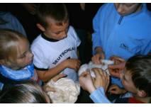 """Kinder beim """"Fühltest"""" im Hafenmuseum Speicher"""