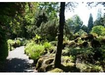 Botanischer Garten Gießen