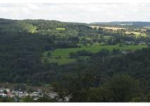 Blick auf Wiesen und Wald