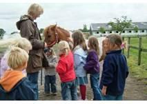 Pony-Reitspielgruppe auf dem Harderhof