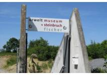 Urwelt-Steinbruch Holzmaden (c) alex grom