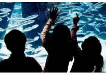 Aquarium Kiel im Institut für Meereskunde