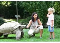 Krefelder Zoo Kindergeburtstag