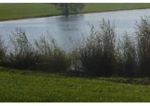 Horstmarer See in Lünen