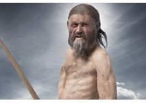 Ötzi im Mamuz Mistelbach