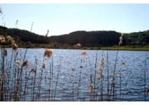 Naturfreibad Meerfelder Maar (c) Gemeinde Meerfeld