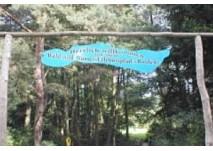Wald- und Wassererlebnispfad Menz (c) NaturParkHaus Stechlin