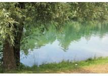 Natur und Kultur im Naturpark Diemelsee