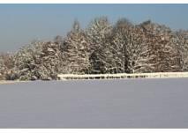 Wintersport im Odenwald