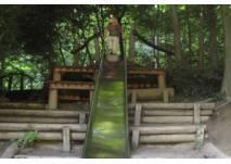 Spielplatz mit Rutsche im Wald