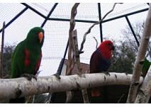 Vogelpark & Streichelzoo in Teltow