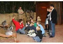 Kindergeburtstag im Tierpark und im Tropen-Aquarium Hagenbeck in Hamburg