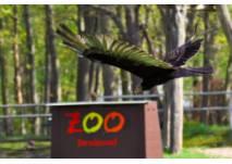 Tierpark Stralsund