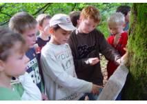 Kinder vor einer Tafel auf dem Trollpfad Kaltenbronn
