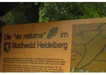 Infotafel via naturae Heidelberg