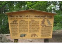 Infotafel am Walderlebnispfad in Heidelberg