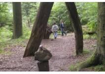 Kinderwanderung Zauberweg am Hasenhorn (c) Alex Grom