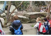 Zoo Heidelberg (c) alex grom