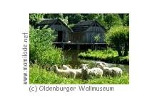 Oldenburger Wallmuseum