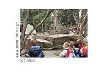 Zoo in Hof Kindergeburtstag