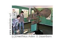 Aalen Urweltmuseum