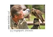 Vogelpark Steinen Sommer-Ferienprogramm