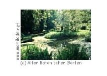 Der Alte Botanische Garten in Göttingen
