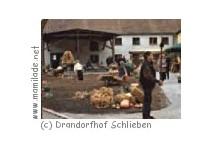 Drandorfhof Schlieben