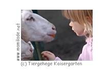 Tiergehege Kaisergarten Oberhausen