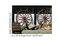 Wikingerhof-Selfkant-Höngen-Dieck