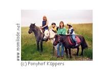 Ponyhof Wulften