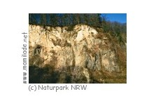 Naturpark Siebengebirge